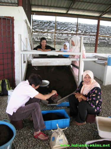 Taman Pertanian Universiti vermicomposting harvest, cacing vermikompos