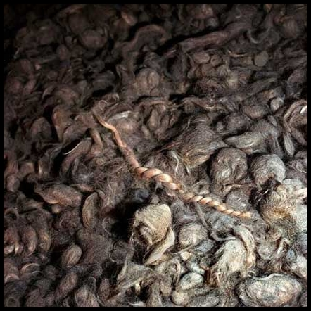 human hair at Auschwitz I